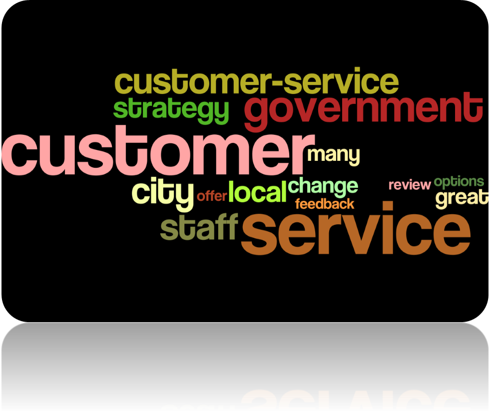Government Customer Service Words