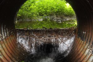 Culvert issues