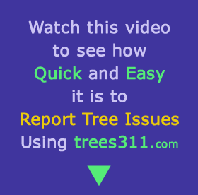 Use trees 311 to report tree issues